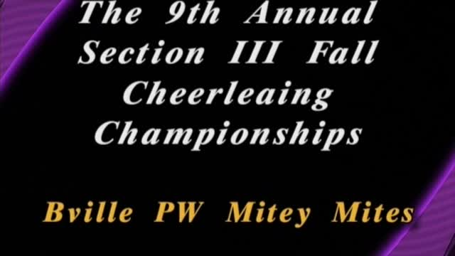 2016 Section III Winter Cheerleading Championships...